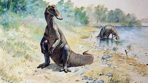 Dinosaurs by Charles R. Knight poster image