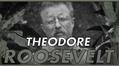 Theodore Roosevelt poster image