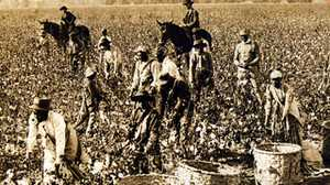 Sharecropping and Changes in the Southern Economy poster image