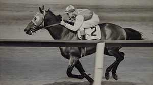 Horseracing in the U.S. poster image