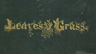 Leaves of Grass poster image