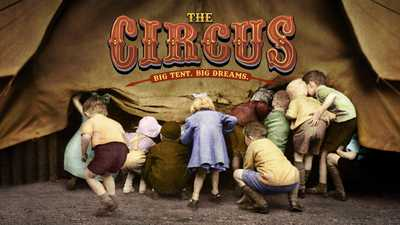 The Circus poster image