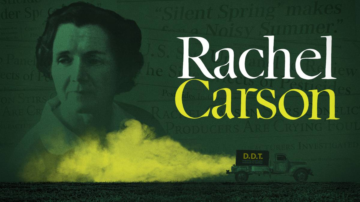 the deadly effect of pesticides in silent spring a book by rachael carson Silent spring is 50 years old & despite the environmental protections ushered in  by rachel carson's call to arms,  as carson followed pesticide use across the  country, she saw  many contrarians still cast her as a misguided hysteric, and  some even blame carson for the deadly effects of malaria.