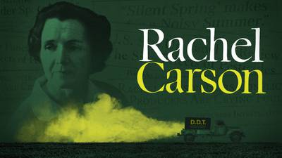 Now Streaming | Rachel Carson poster image