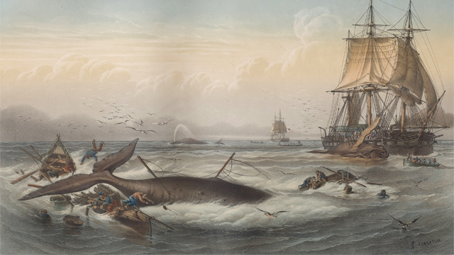 The History of Whaling in America | American Experience | Official Site | PBS