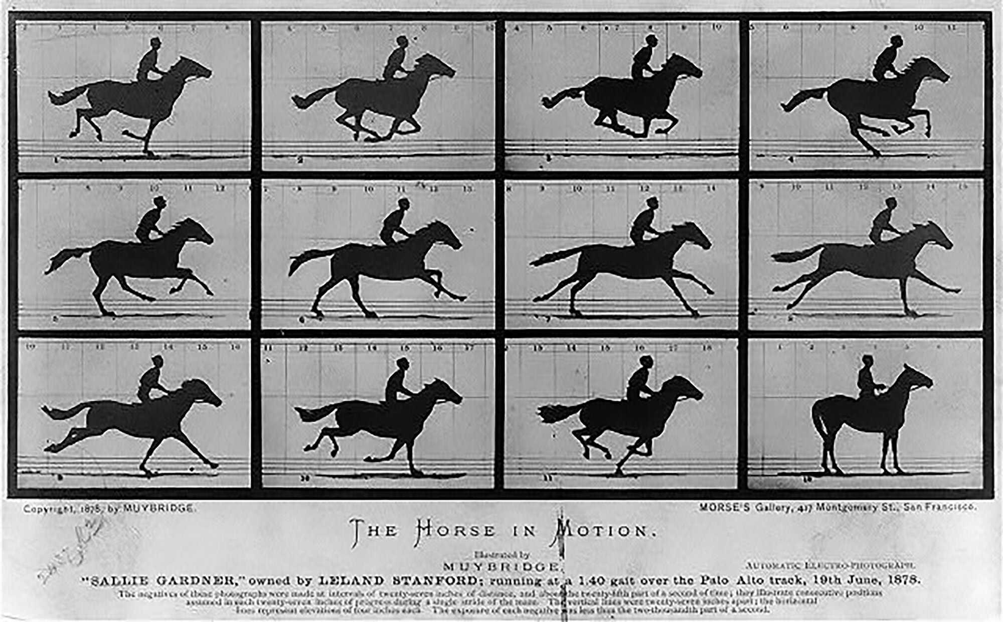 Pickford-History-Horse_1878.jpg
