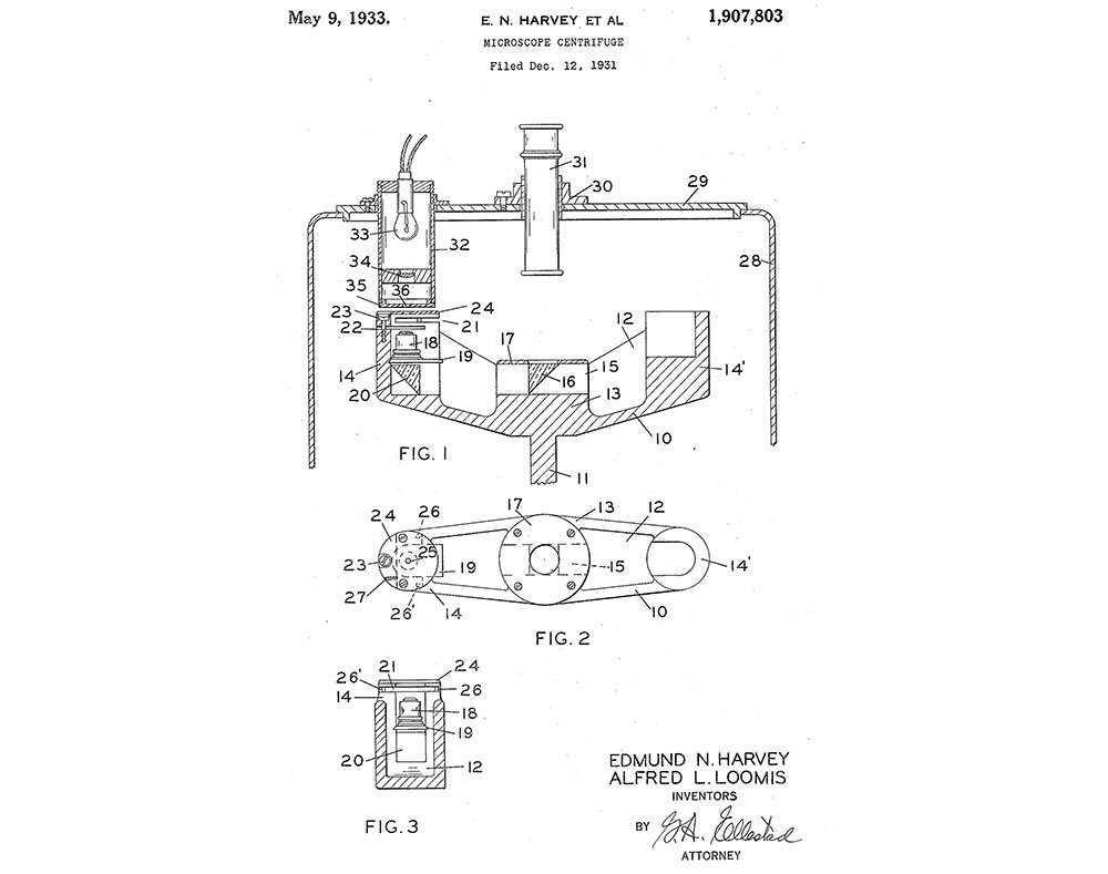Tuxedo-Patent-6 centered.jpg