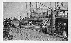 fever-1878-01.jpg