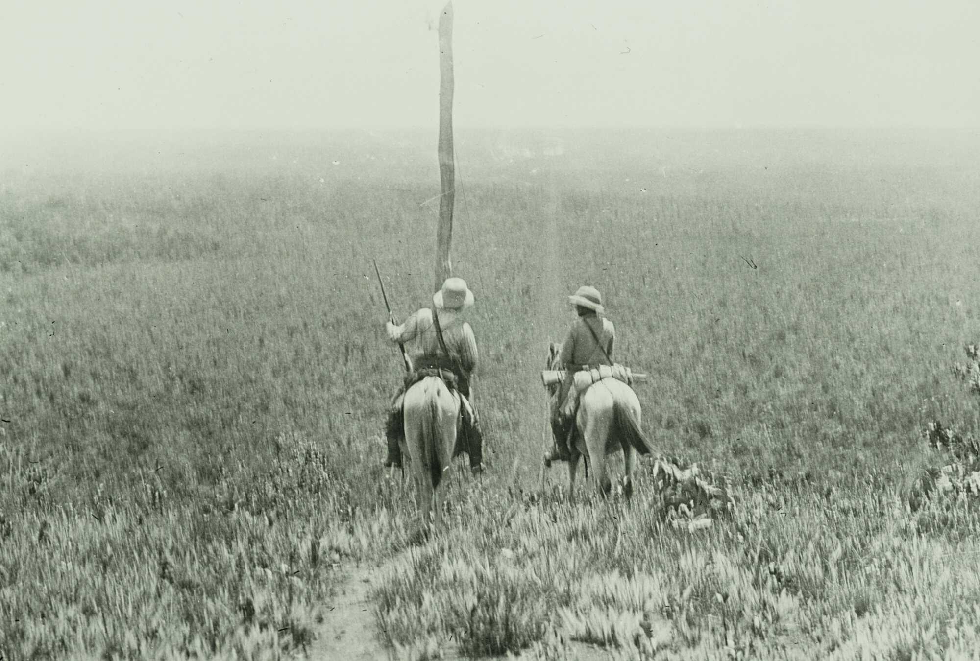 Amazon-Diary-4-horses-2-ROD_10390_AS_M_V2_LOC.jpg