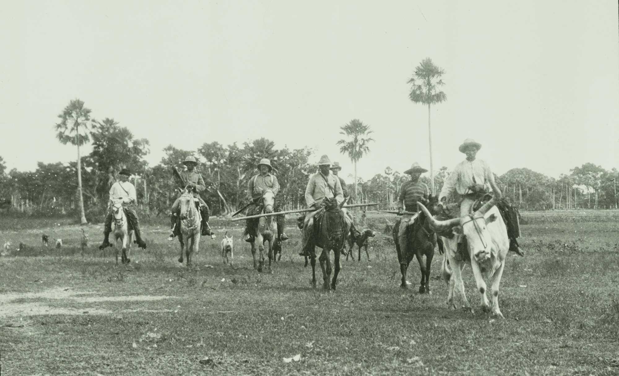 Amazon-Diary-2-horses-ROD_10369_AS_M_V2_LOC.jpg