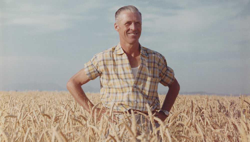 Borlaug-Article-1.jpg