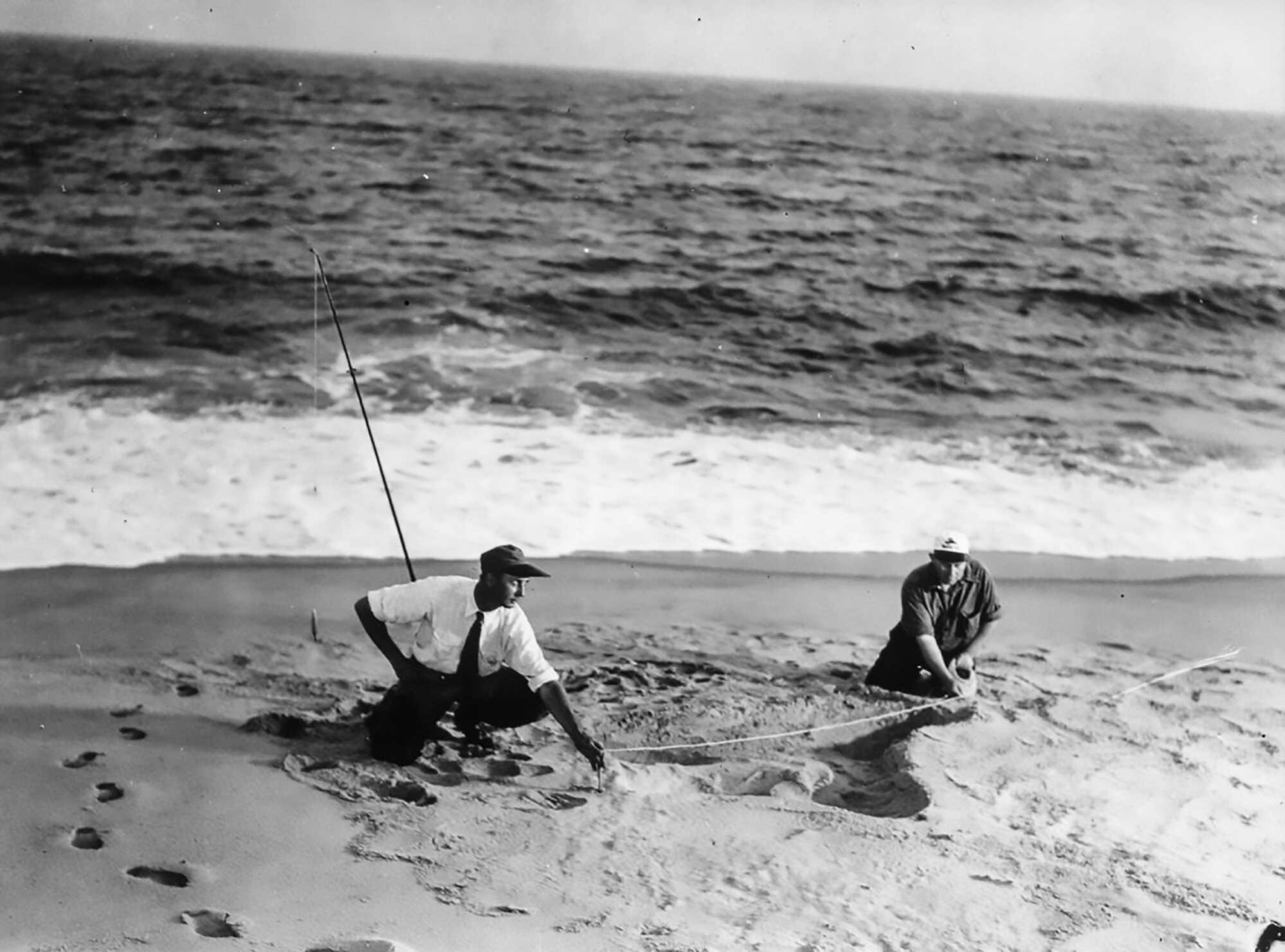 Sea-Monster-Beach-Measure-NHA_http-%2F%2Fa.amz.mshcdn.com%2Fwp-content%2Fuploads%2F2016%2F02%2Fseaserpent-11.jpg