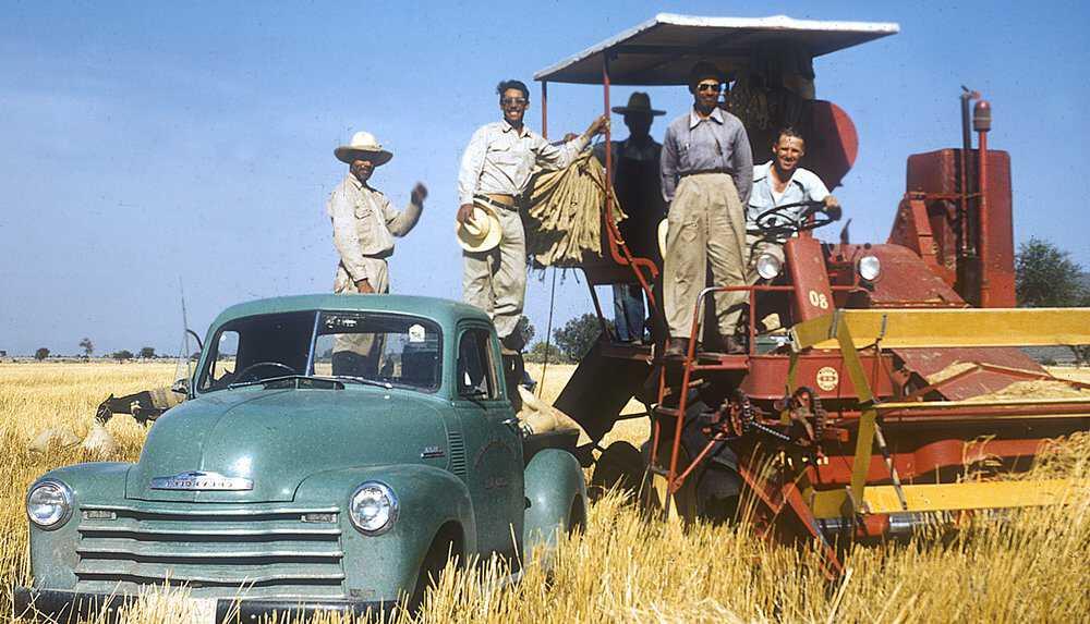 Borlaug-Article-2.jpg