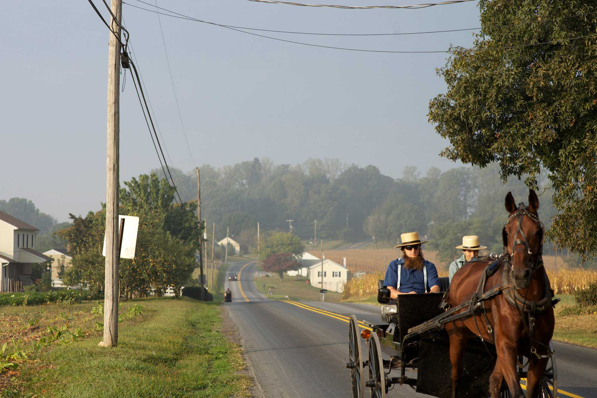Amish-FAQ-feature-image.jpg