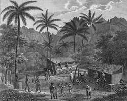 1841-Into-Deep.jpg