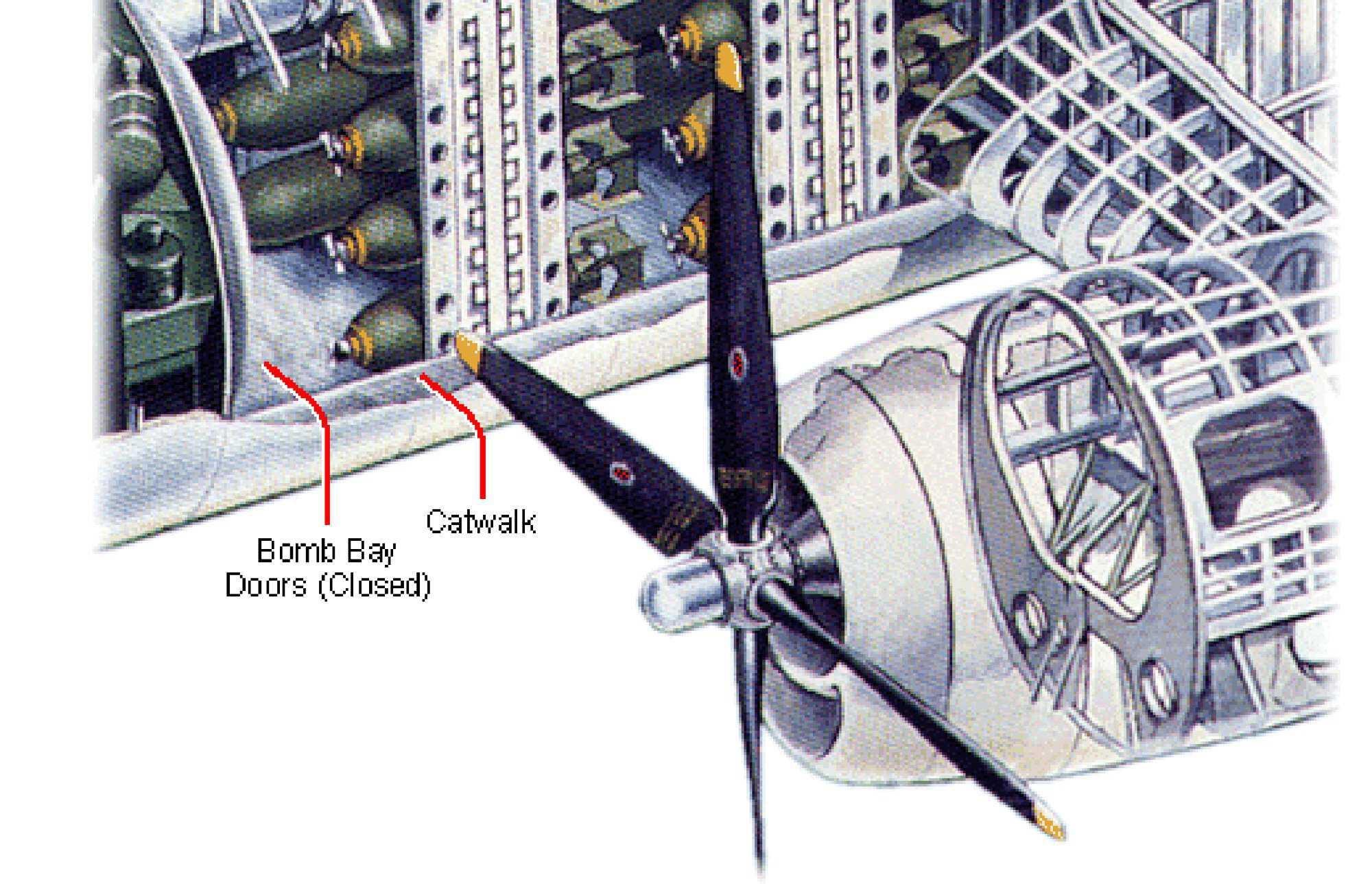 flygirls-B29-for_bomb_bottom.jpg