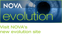 Visit  NOVA's new evolution site