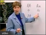 Image of Marilyn Havlik at a chalk board.