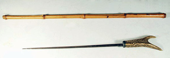 a photograph of a weapon walking stick -- a cane with a hidden sword. In the photograph, the gold-handled sword has been removed from its hiding place within the stick, which is made out of an antler