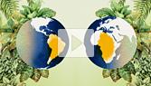 Biogeography: Where Life Lives