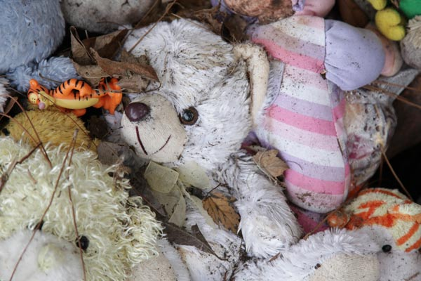discarded doll  a photo essay of the caylee anthony