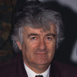 Karadzic's War Crimes