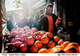 Dispatch | Yalda: The Evolution of an Iranian Tradition