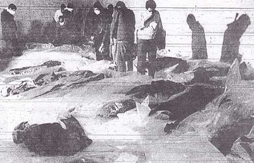 Remembering Iran Air Flight 655