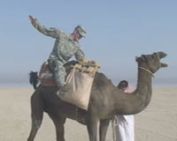 Spc. Bryan Hamlin finds a camel in Kuwait - and tries to hitch a ride home.