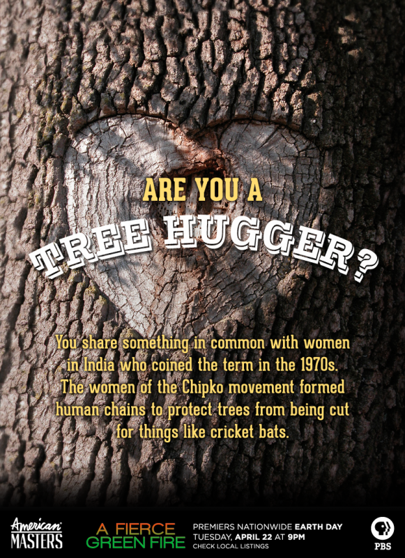 What are Tree Huggers?