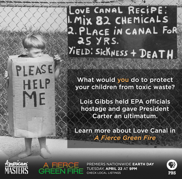 amms-Fierce-Green-LoveCanal
