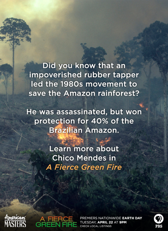 who killed chico mendes essay A brazilian rancher's son stunned a court today by confessing that he shot and killed an amazon environmental campaigner and union leader nearly two years ago the confession in the death of francisco (chico) mendes, on the opening day of the trial in this remote amazon village in the western.