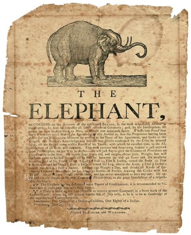 RJPhoto-Elephant