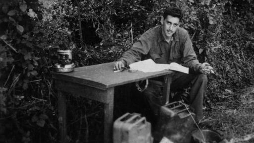 The Impact of World War II on Salinger's Writing