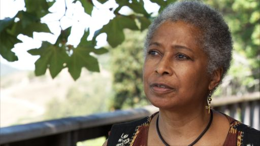 Alice Walker Describes Creativity