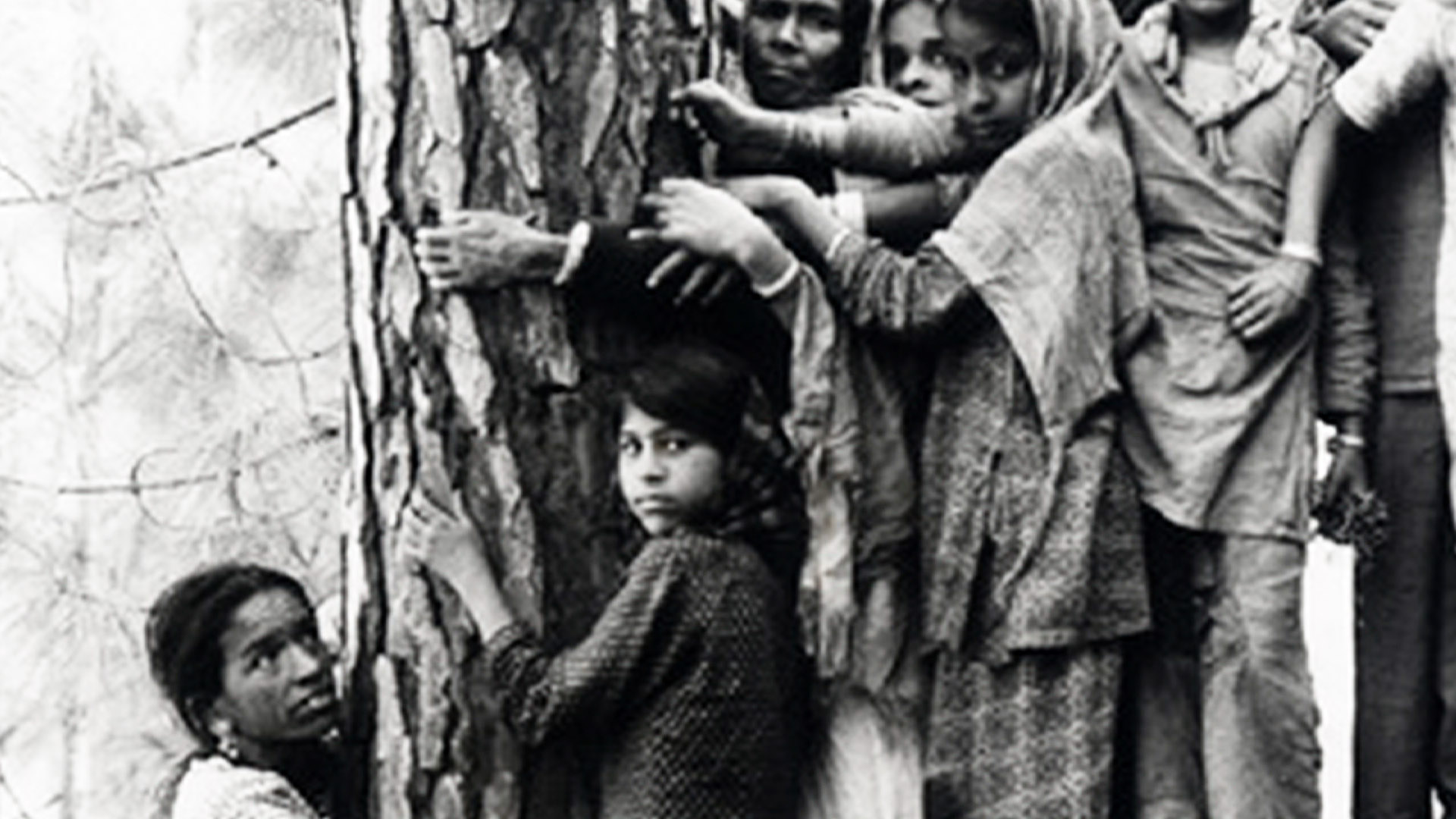 chipko movement in india Article on the `chipko movement` or `chipko andolan` was a forest conservation movement in india brief history, download pdf.