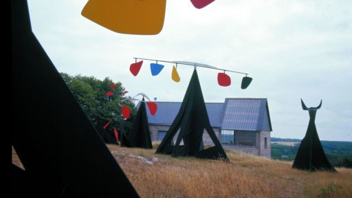 Alexander Calder works photo by Pedro E. Guerrero