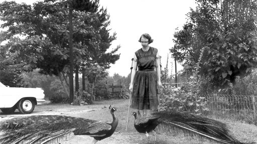How did Flannery O'Connor's writing reflect her disability?