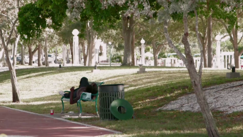 Debate Over How to Treat the Homeless Simmers in Sarasota