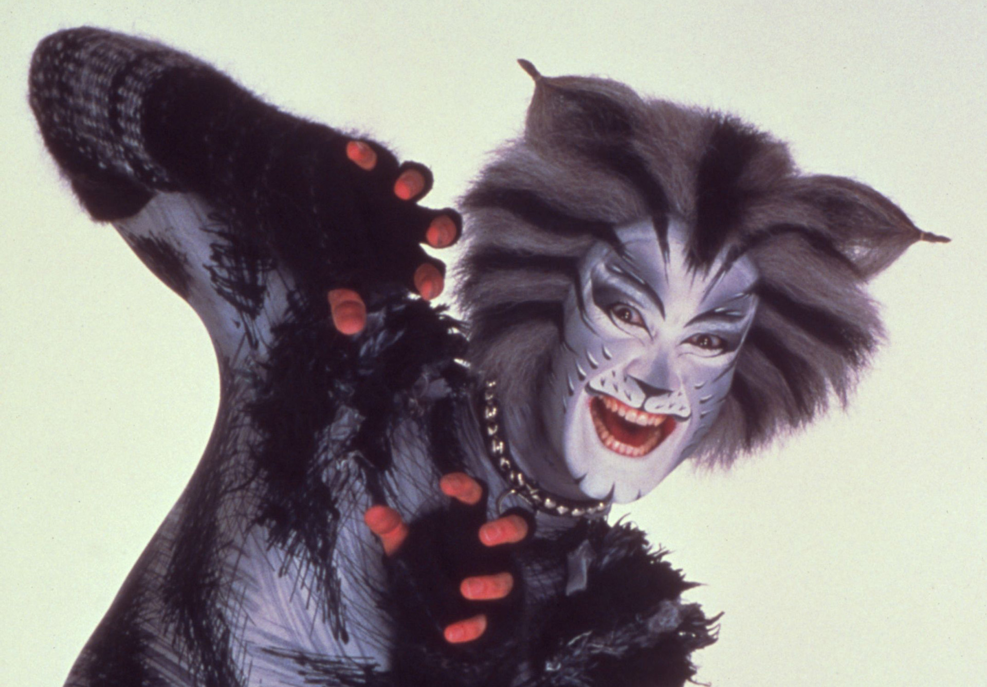 Cats Makeup Tips for National Cat Day and Halloween | News | Great ...