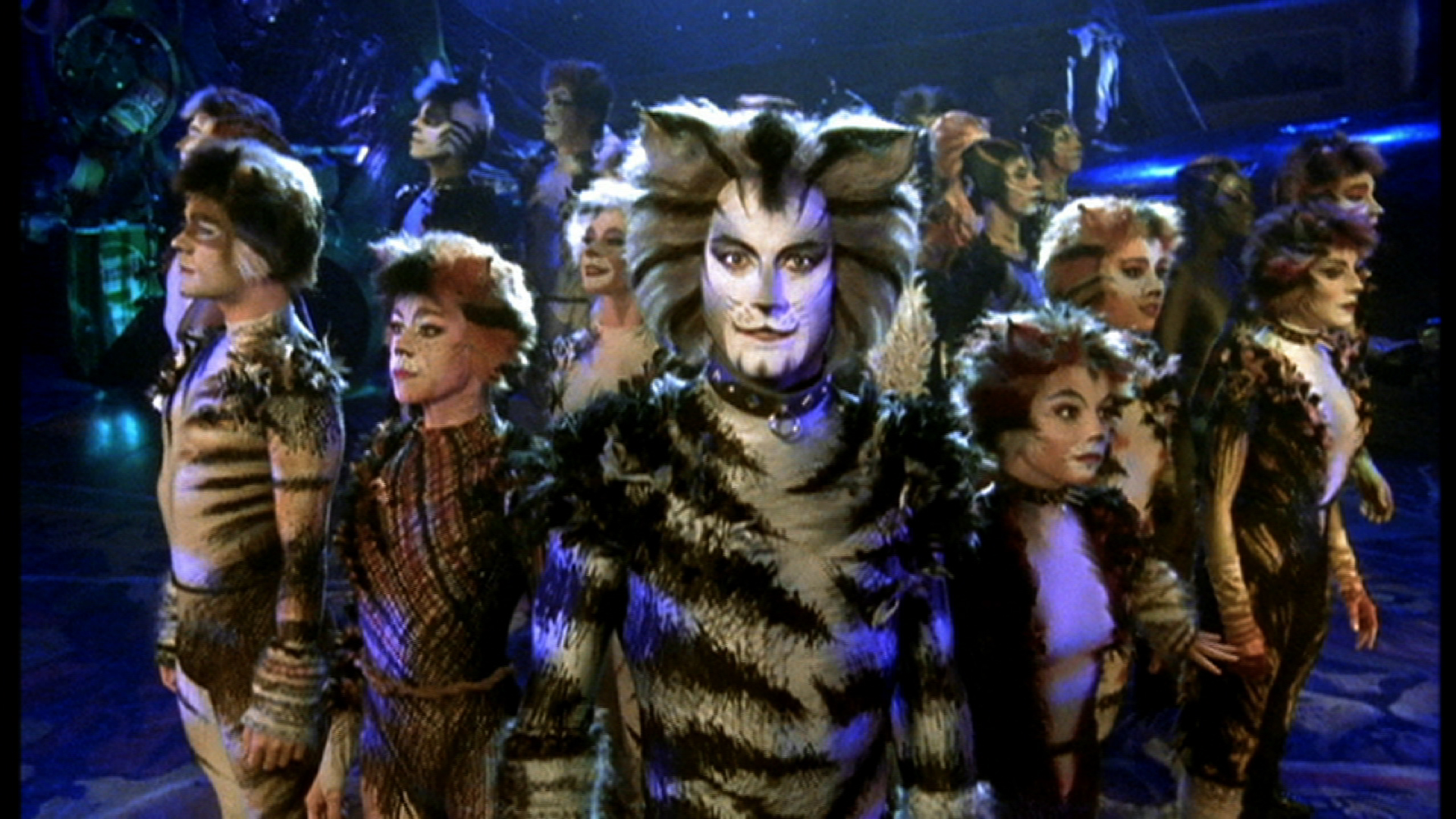 the musical cats A great filming of the cats broadway musical it's a damn shame they edited out the growltiger's last stand musical number in its entirety some of the accents were hard to understand.