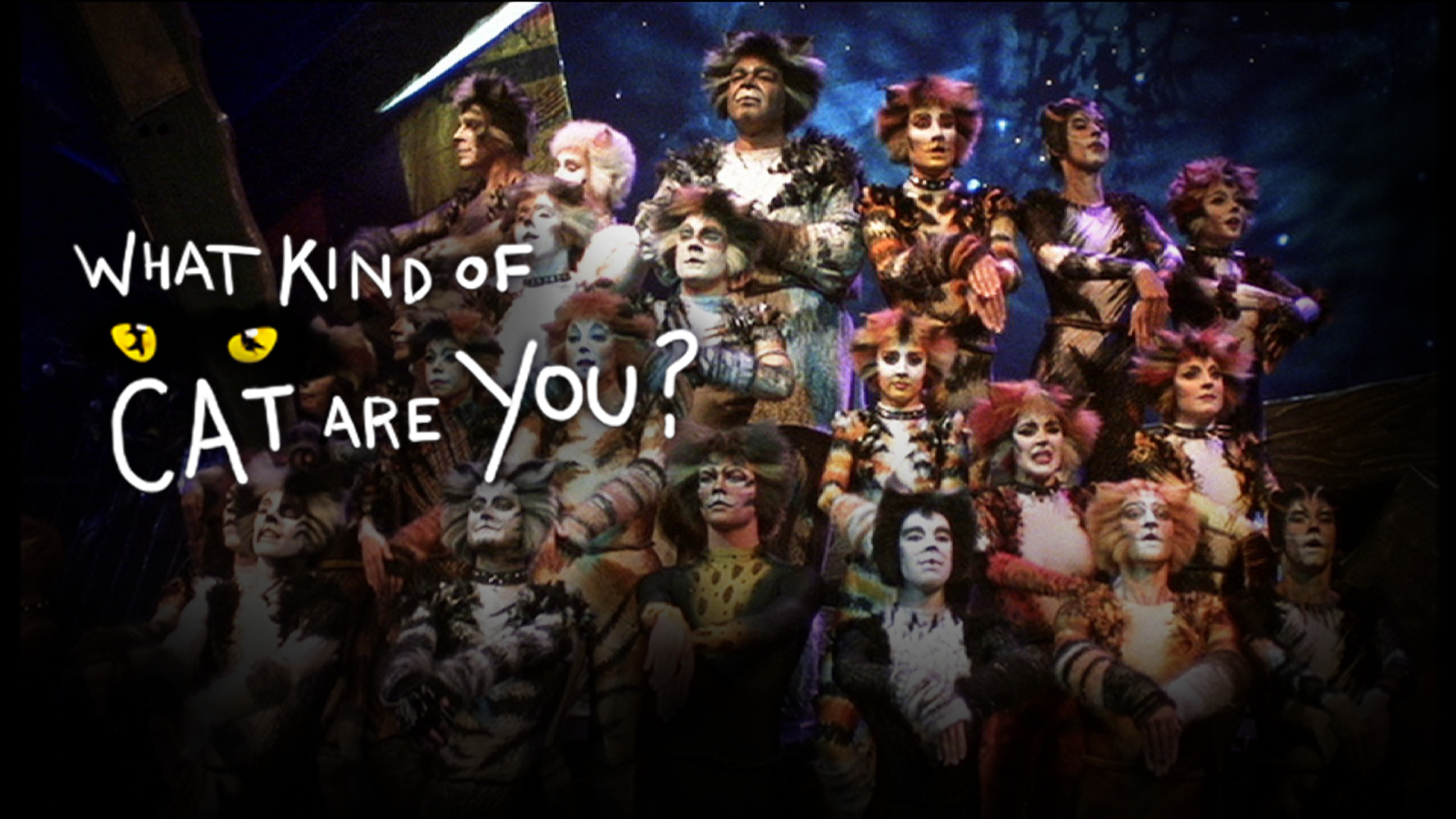 Cats Musical Characters Pictures Names