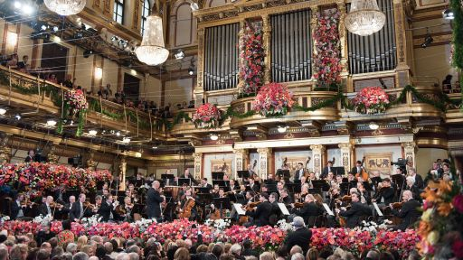 Vienna Phliharmonic New Year's Concert. Photo Terry Linke