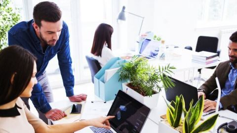 Easy Ways You Can Be More Eco-Friendly at Work
