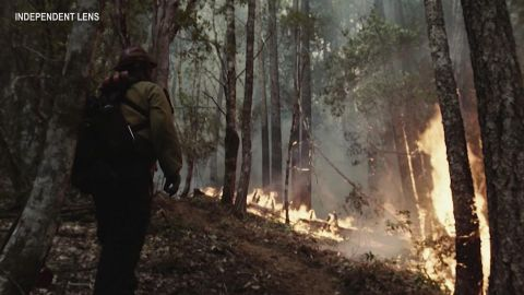 "Filmmakers become firefighters in making of ""Wildland"""