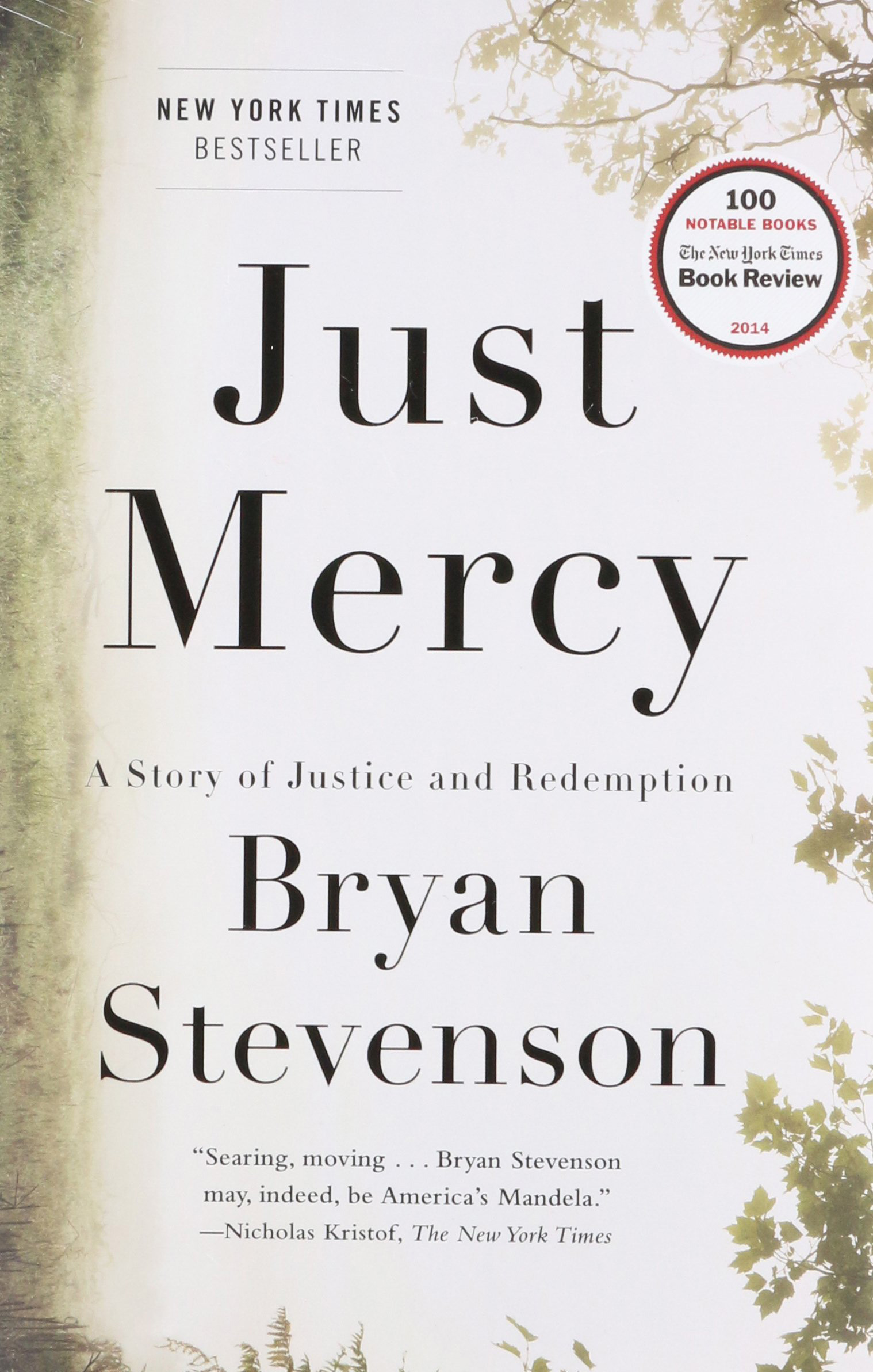 Image result for Just Mercy: A Story of Justice and Redemption by Bryan Stevenson (Just Mercy: A Story of Justice and Redemption)