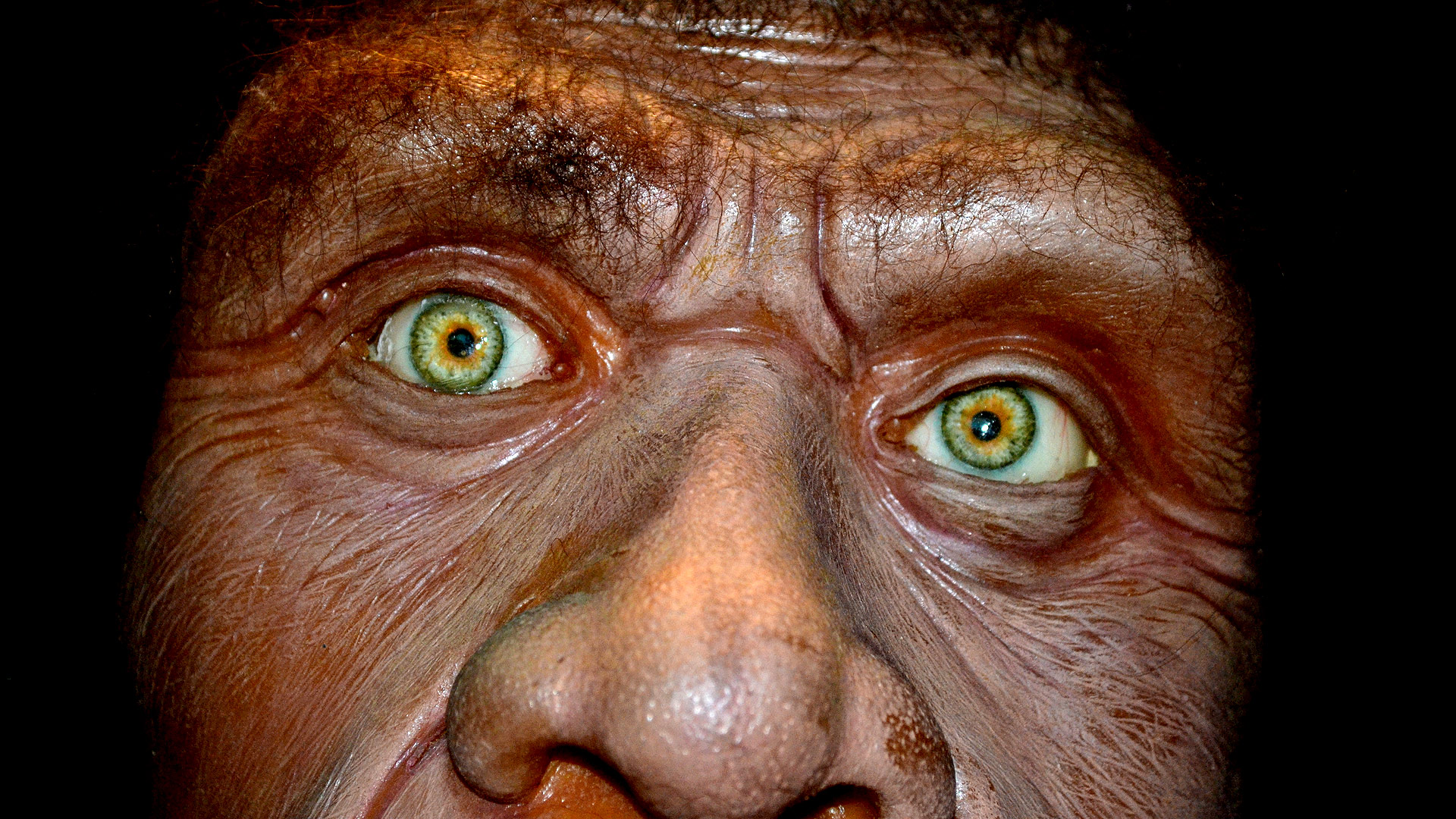 Image result for death of a caveman