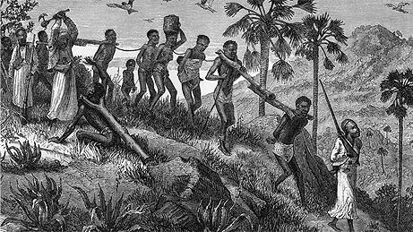 What Historians Know  Mr Livingstone I Presume