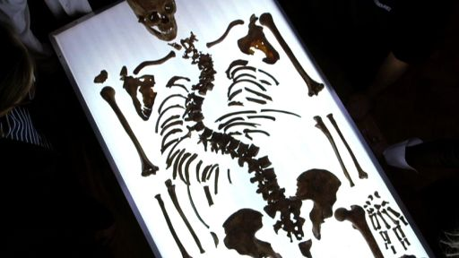 11 Things You May Not Know About Richard III