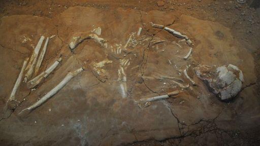 Ancient Greeks Feared the Walking Dead? – Secrets in the News: June 13 – 19, 2015